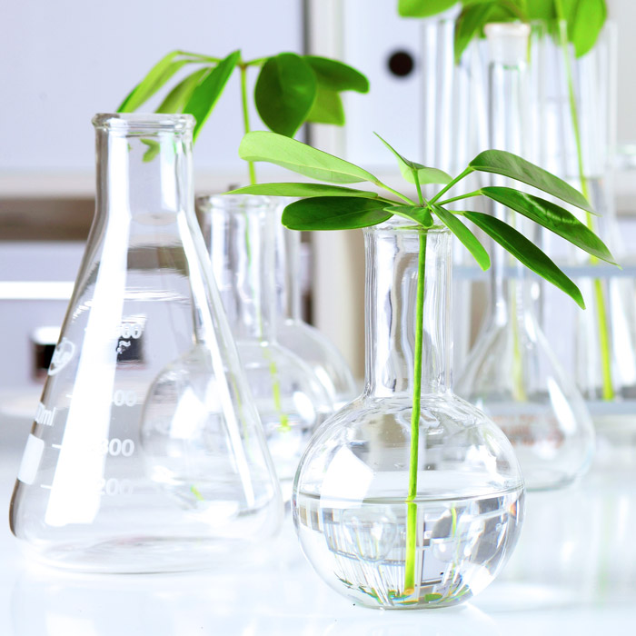 Sviluppo ingredienti innovativi Kialab