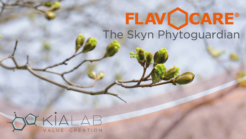 Flavocare® Hydroglyceric